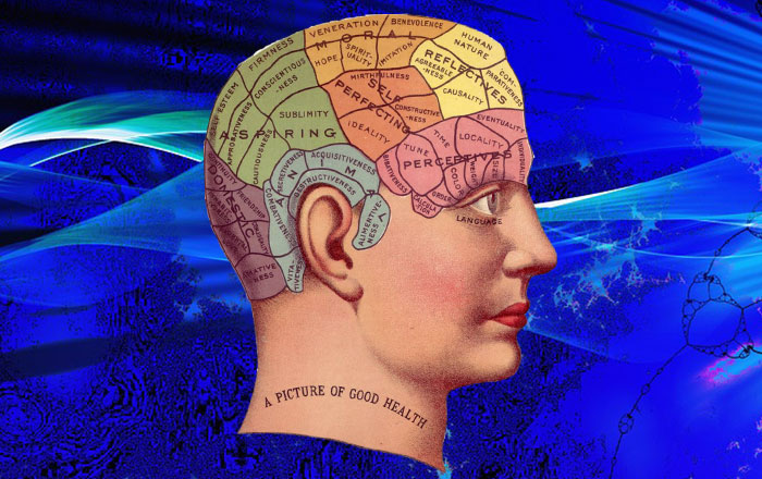 脳の部分別名称