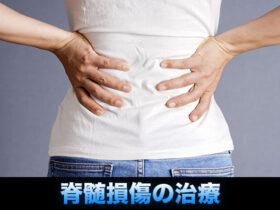 脊髄損傷の治療